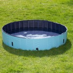 dog-pool